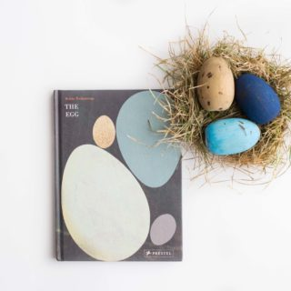 """""""The Egg"""" and Painted Speckled Egg Craft"""